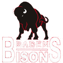 badenbisons.3b-shop.de